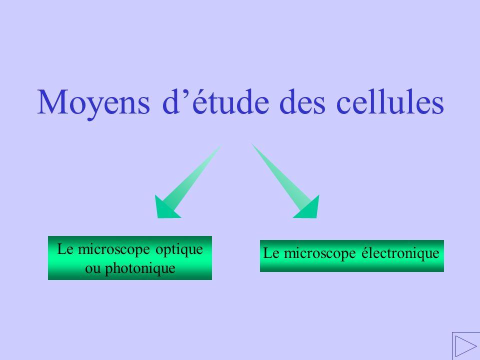Le microscope optique ou photonique