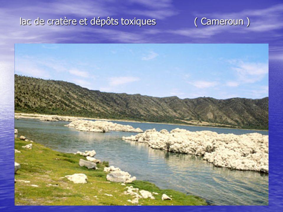 lac de cratère et dépôts toxiques ( Cameroun )
