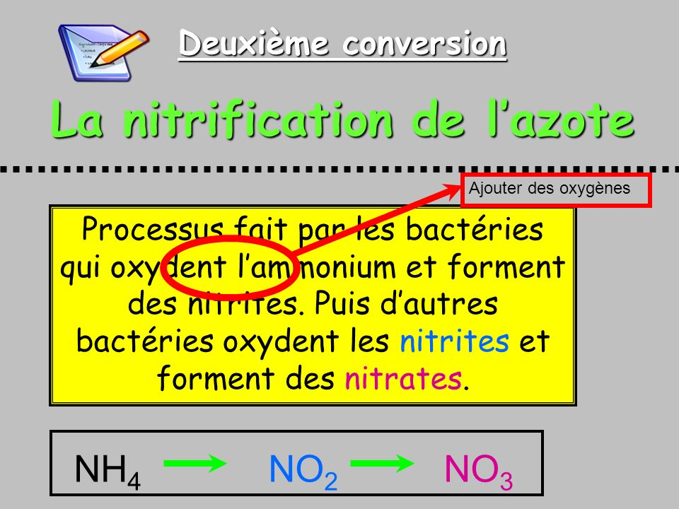 La nitrification de l'azote