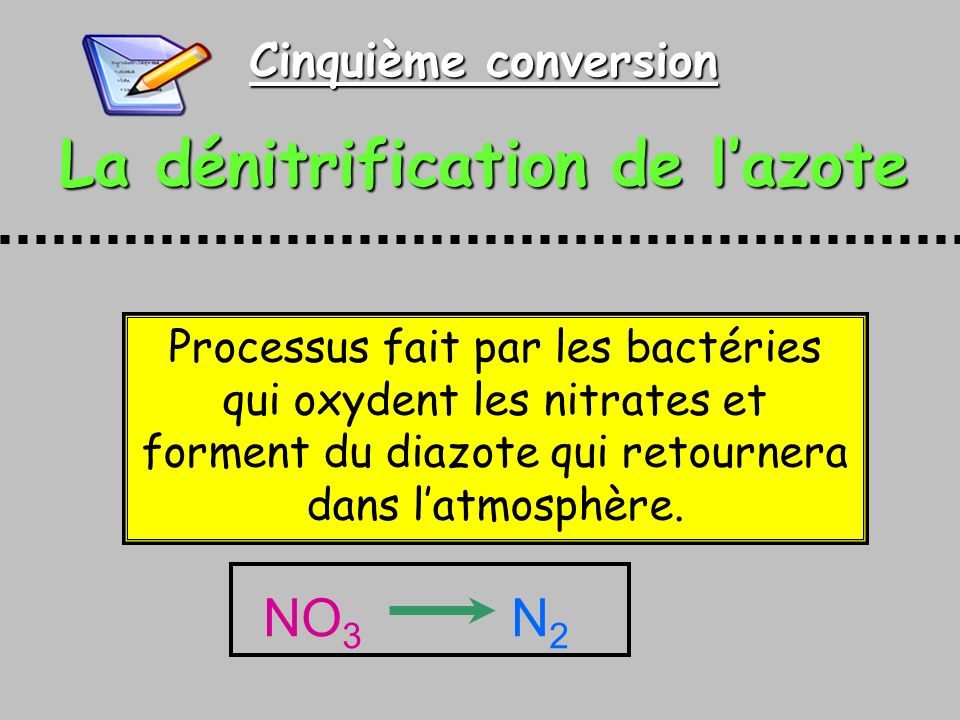 La dénitrification de l'azote