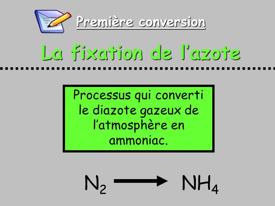 Processus qui converti le diazote gazeux de l'atmosphère en ammoniac.