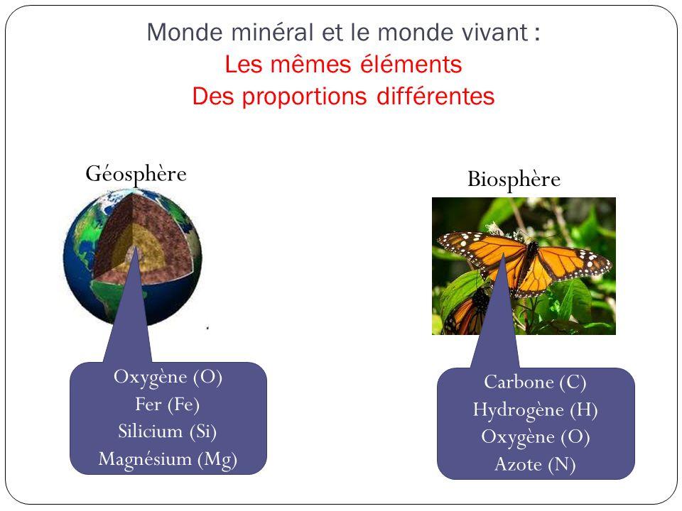 Carbone (C) Hydrogène (H) Oxygène (O)