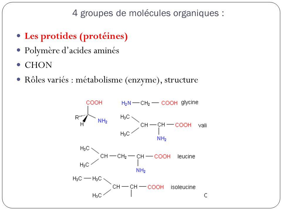 4 groupes de molécules organiques :