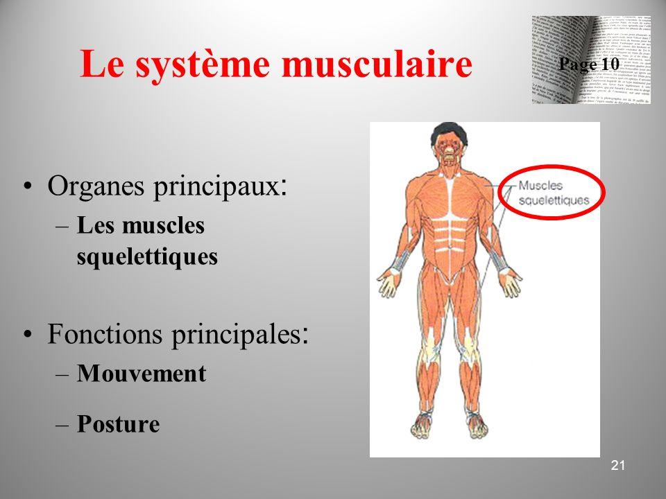 Le système musculaire Organes principaux: Fonctions principales: