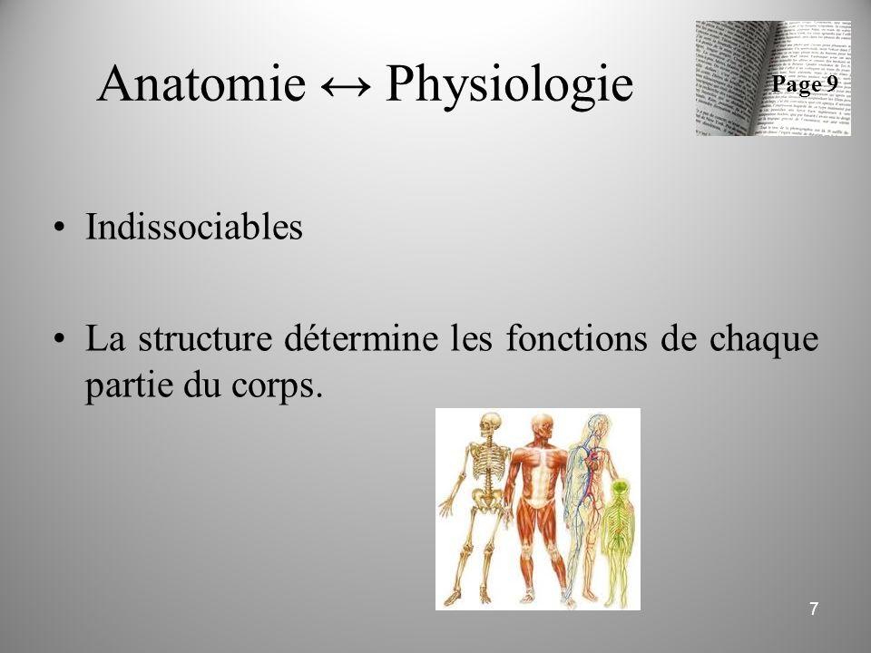 Anatomie ↔ Physiologie