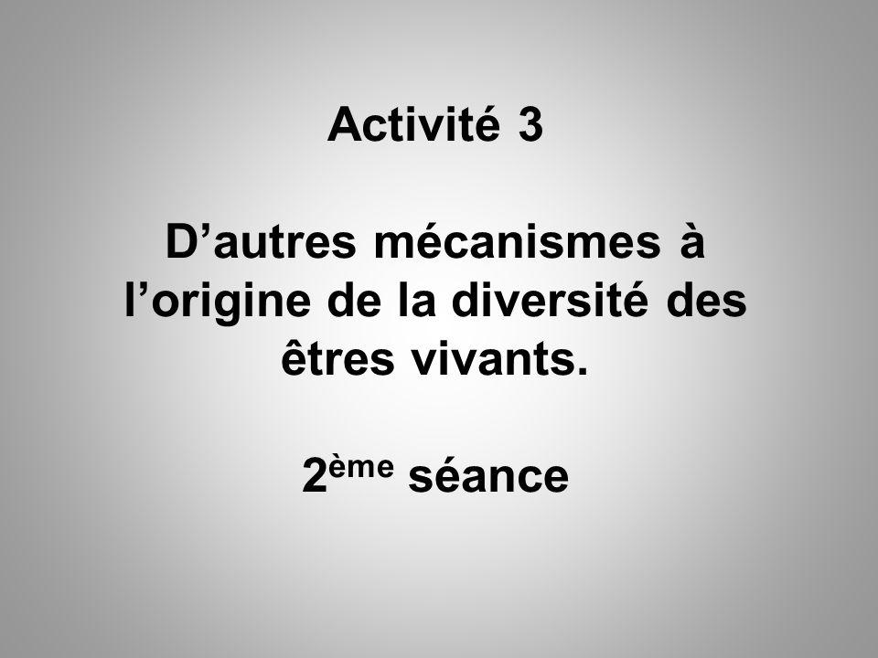 Activité 3 D'autres mécanismes à l'origine de la diversité des êtres vivants. 2ème séance
