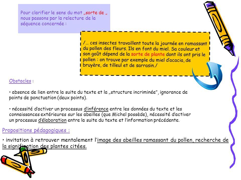"""Pour clarifier le sens du mot """"sorte de """" nous passons par la relecture de la séquence concernée :"""