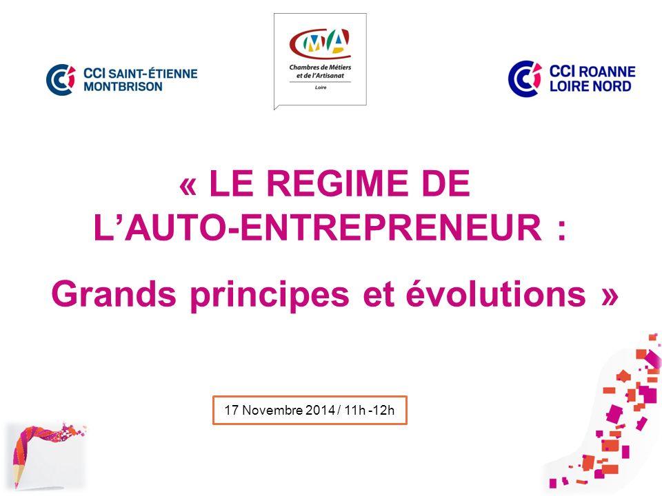 Le Regime De L'Auto-Entrepreneur : Grands Principes Et Évolutions