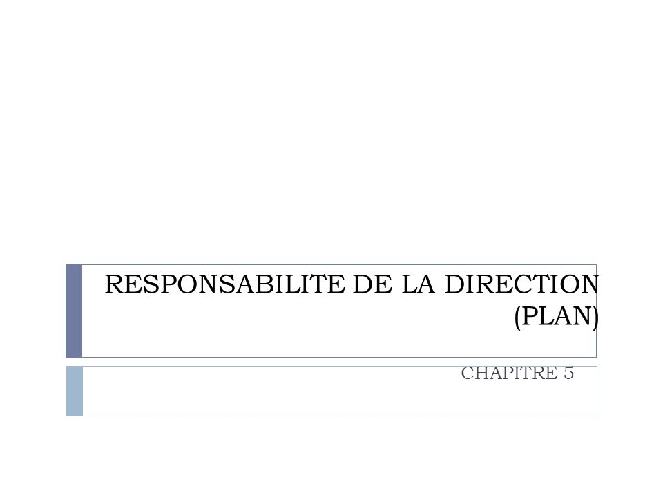 RESPONSABILITE DE LA DIRECTION (PLAN)
