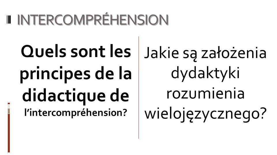 Quels sont les principes de la didactique de l'intercompréhension
