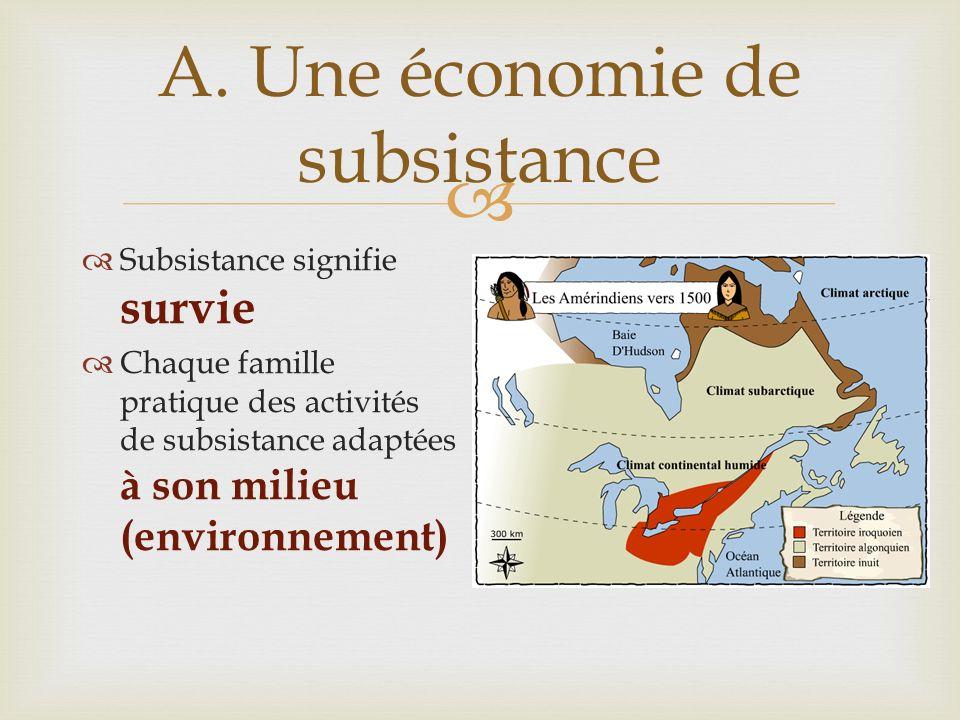 A. Une économie de subsistance