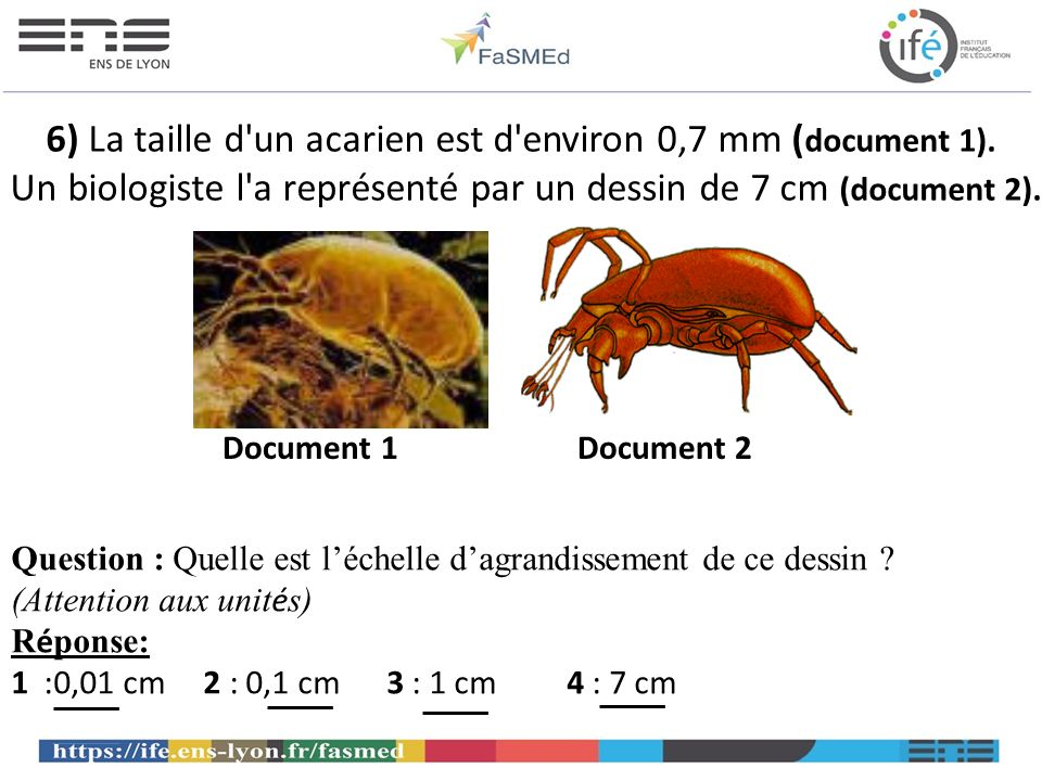 6) La taille d un acarien est d environ 0,7 mm (document 1)