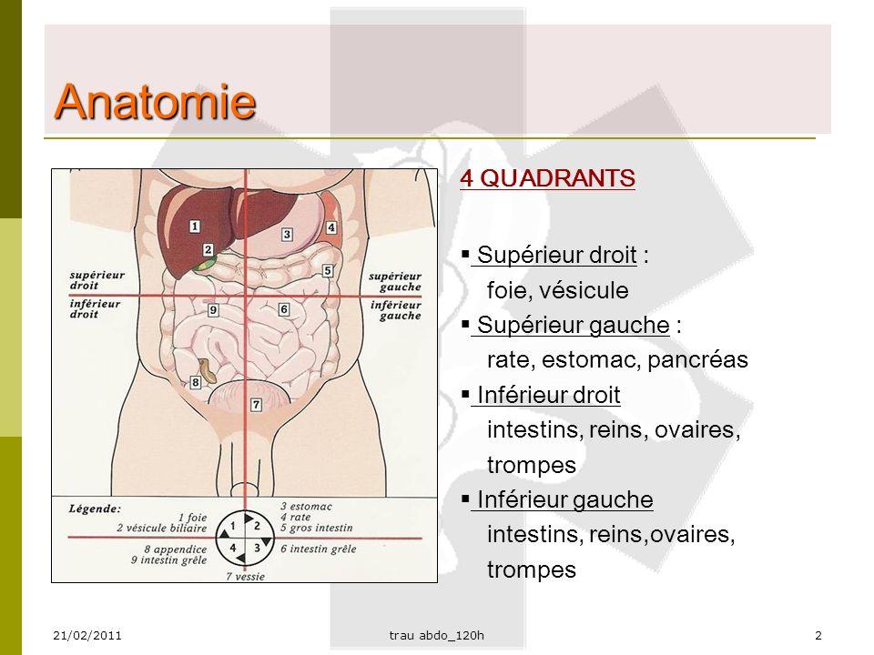 Anatomie 4 QUADRANTS Supérieur droit : foie, vésicule