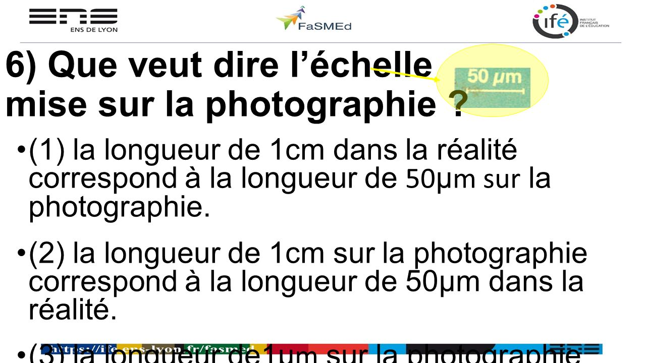 6) Que veut dire l'échelle mise sur la photographie