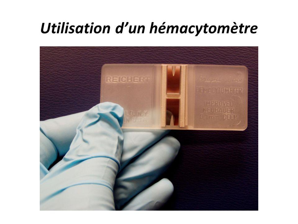 Compter les microorganismes ppt t l charger for Utilisation d un ohmmetre