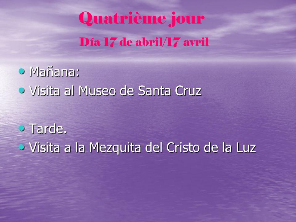 Visita al Museo de Santa Cruz Tarde.