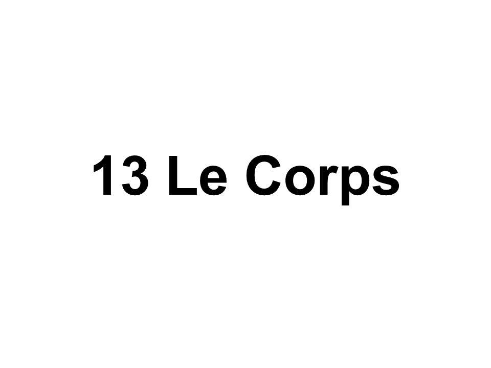 13 Le Corps