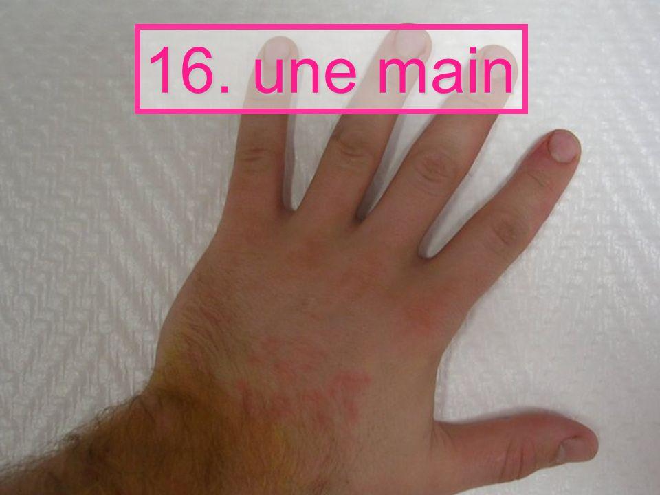 16. une main