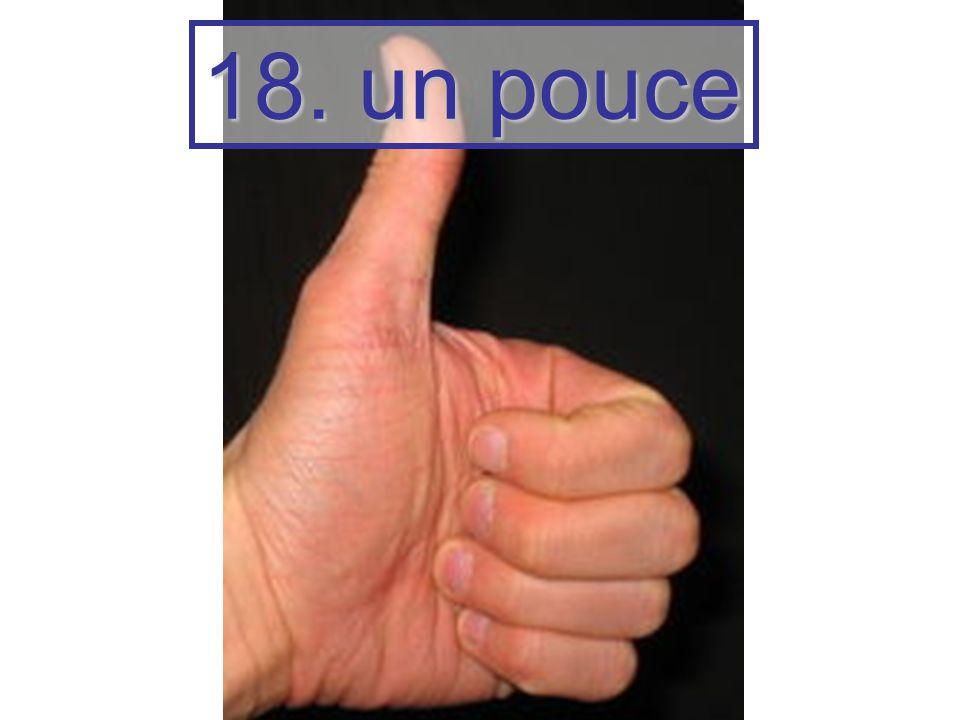 18. un pouce