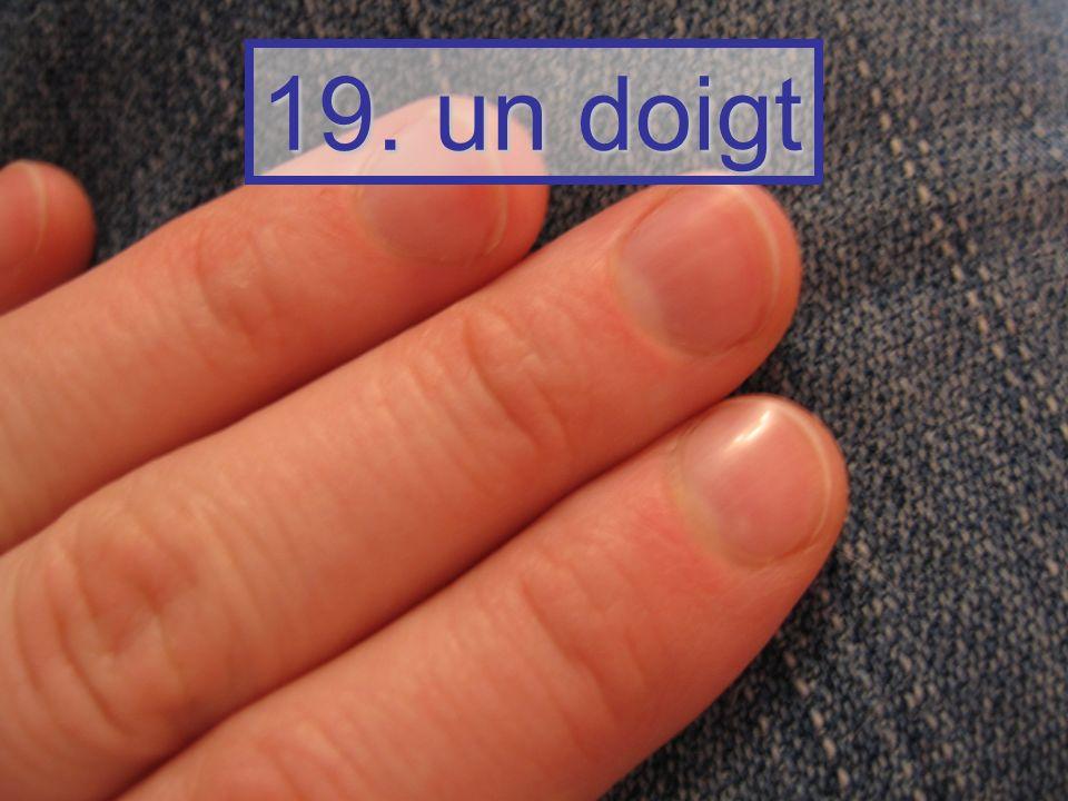 19. un doigt