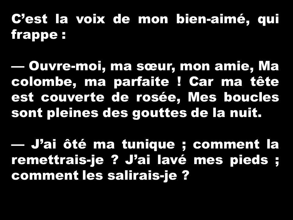 Cantique des cantiques ppt video online t l charger for J ai ouvert ma fenetre