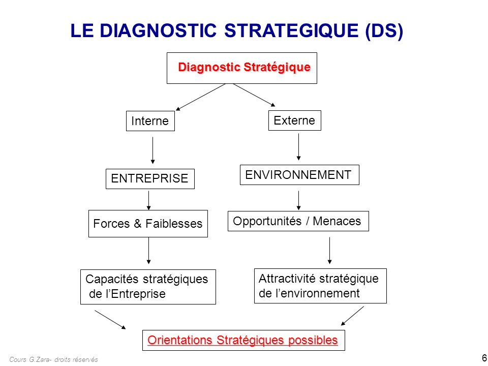 LE DIAGNOSTIC STRATEGIQUE (DS)