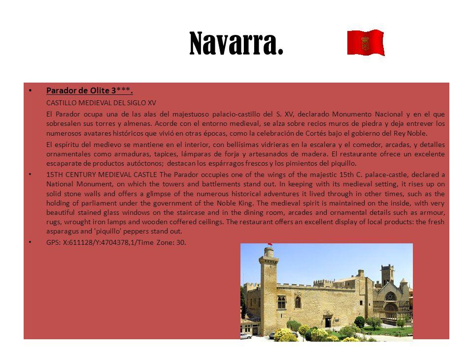 Navarra. Parador de Olite 3***. CASTILLO MEDIEVAL DEL SIGLO XV