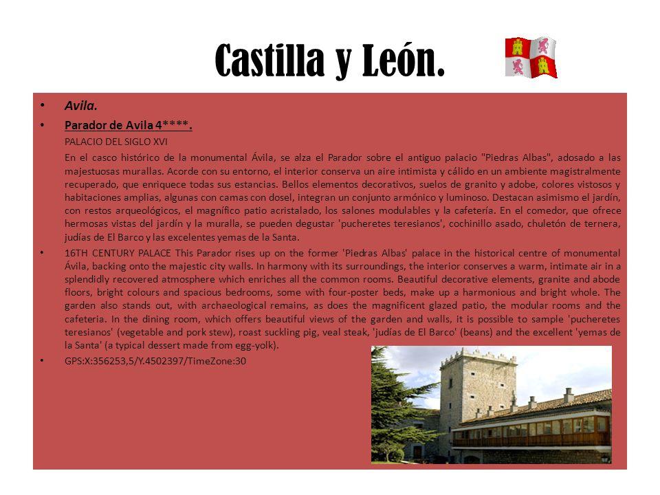 Castilla y León. Avila. Parador de Avila 4****. PALACIO DEL SIGLO XVI