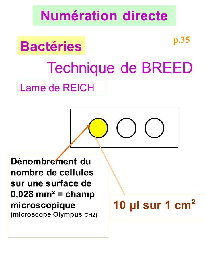 Technique de BREED Numération directe Bactéries 10 μl sur 1 cm²
