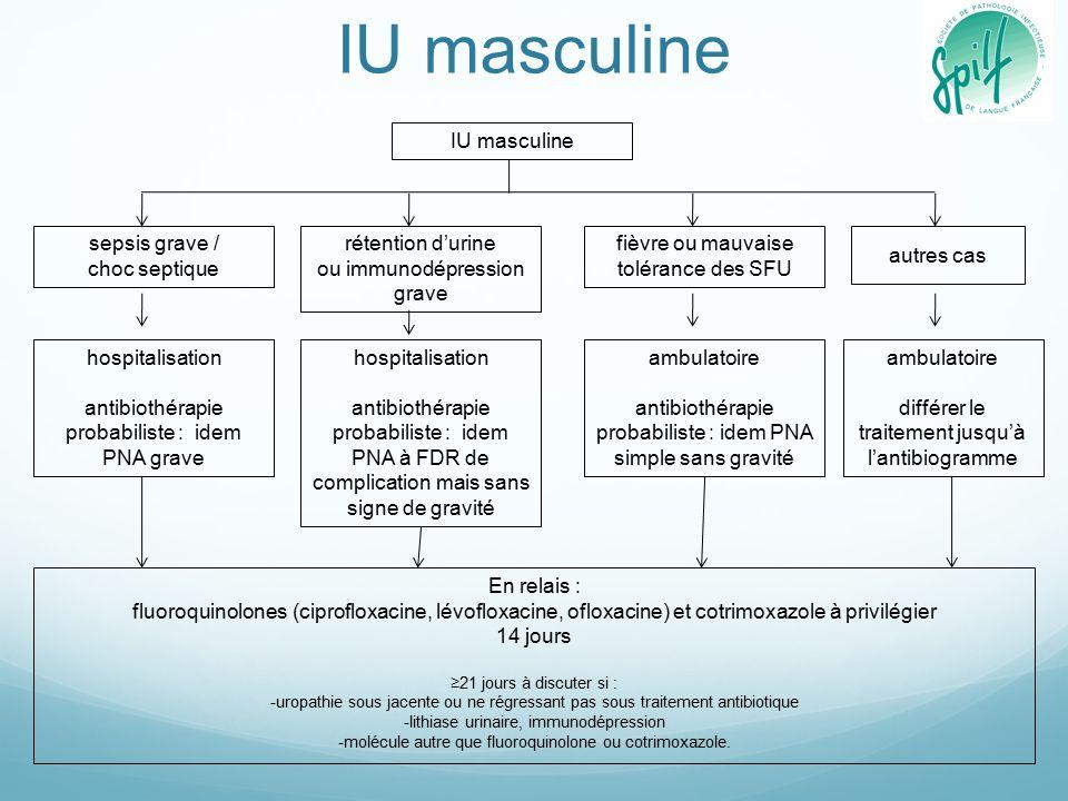 Diagnostic et antibiothérapie des infections urinaires