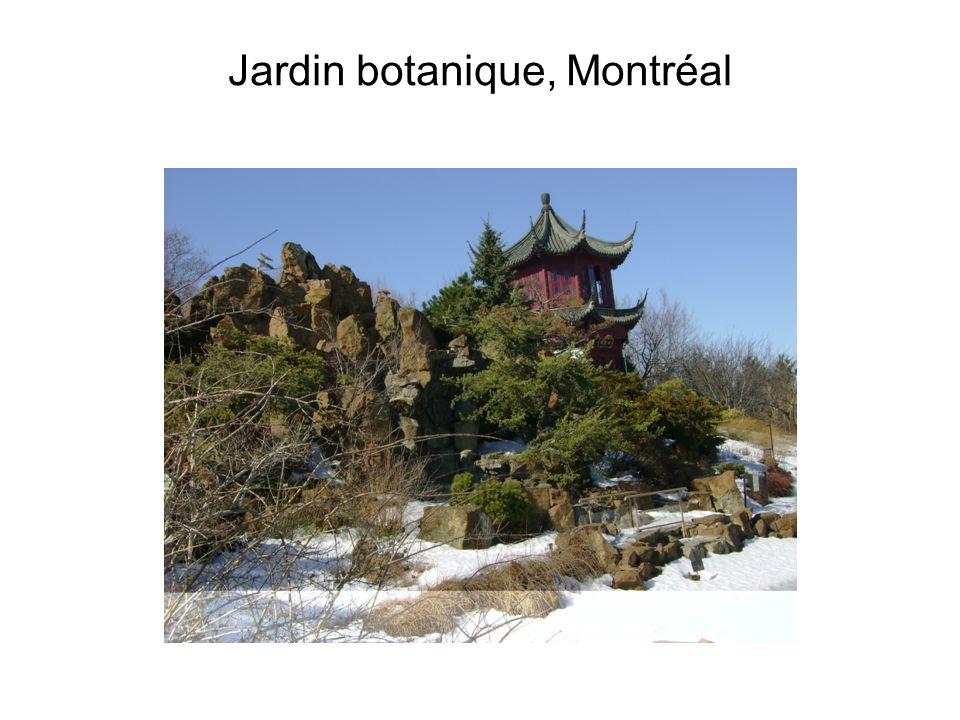Paysage de montagne dynastie yuan 13e 14e si cles ppt for Amis jardin botanique