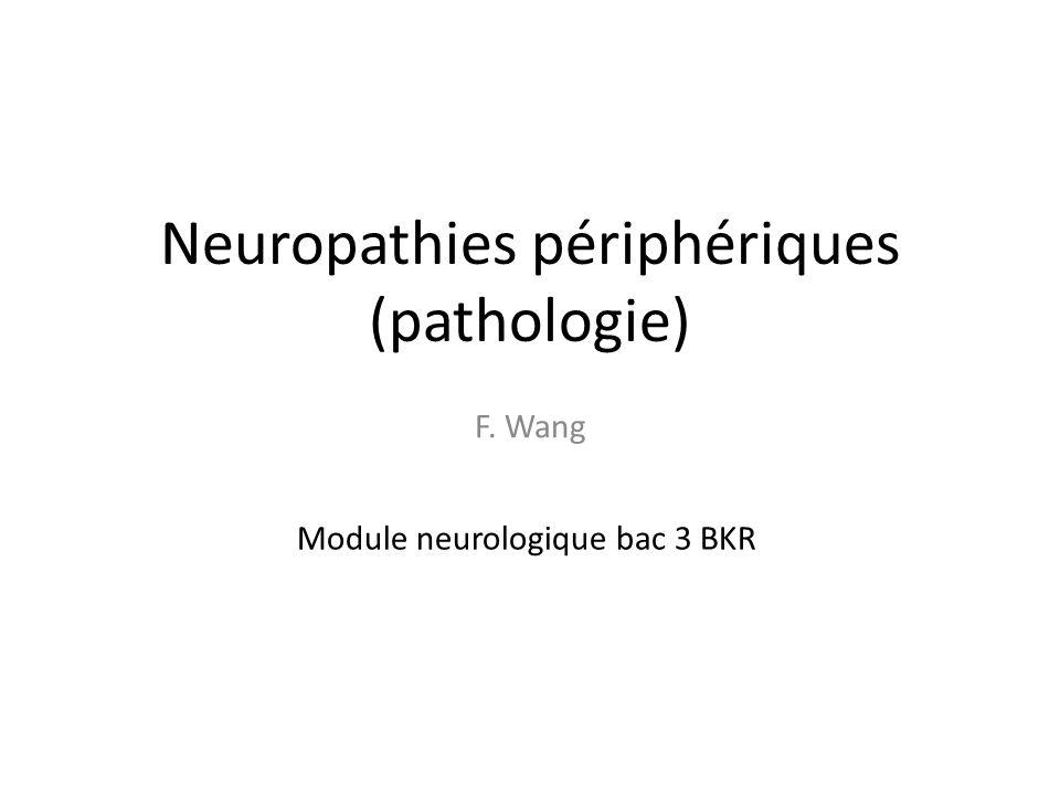 Neuropathies périphériques (pathologie)