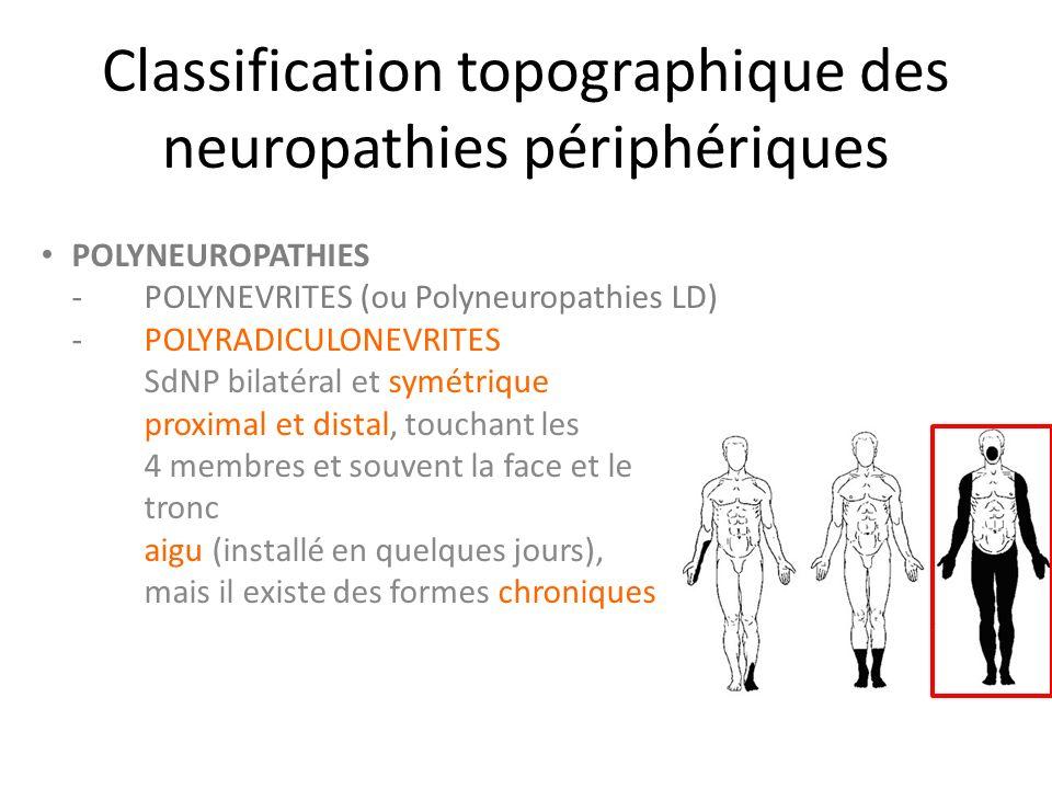 Classification topographique des neuropathies périphériques