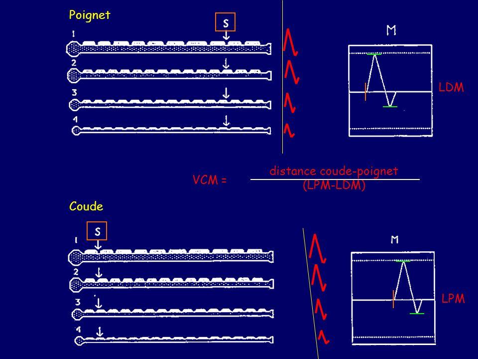 distance coude-poignet (LPM-LDM)