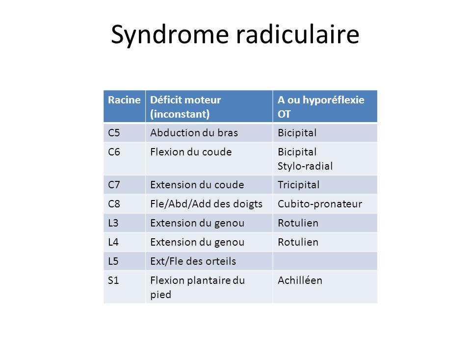 Syndrome radiculaire Racine Déficit moteur (inconstant)