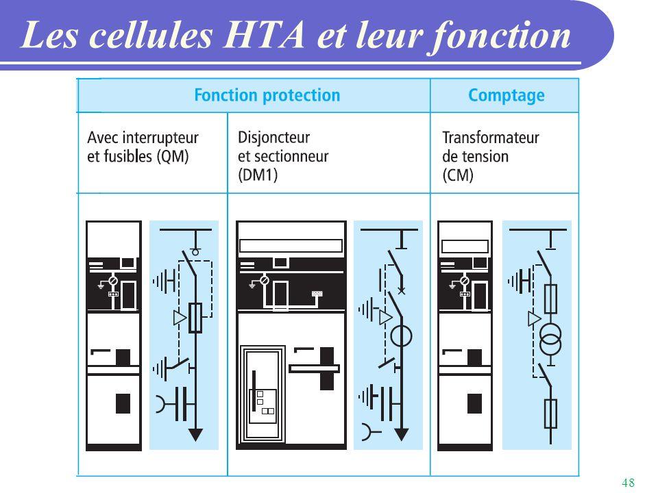 Les cellules HTA et leur fonction