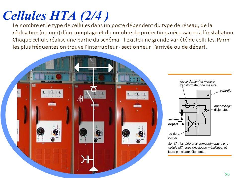 Cellules HTA (2/4 )