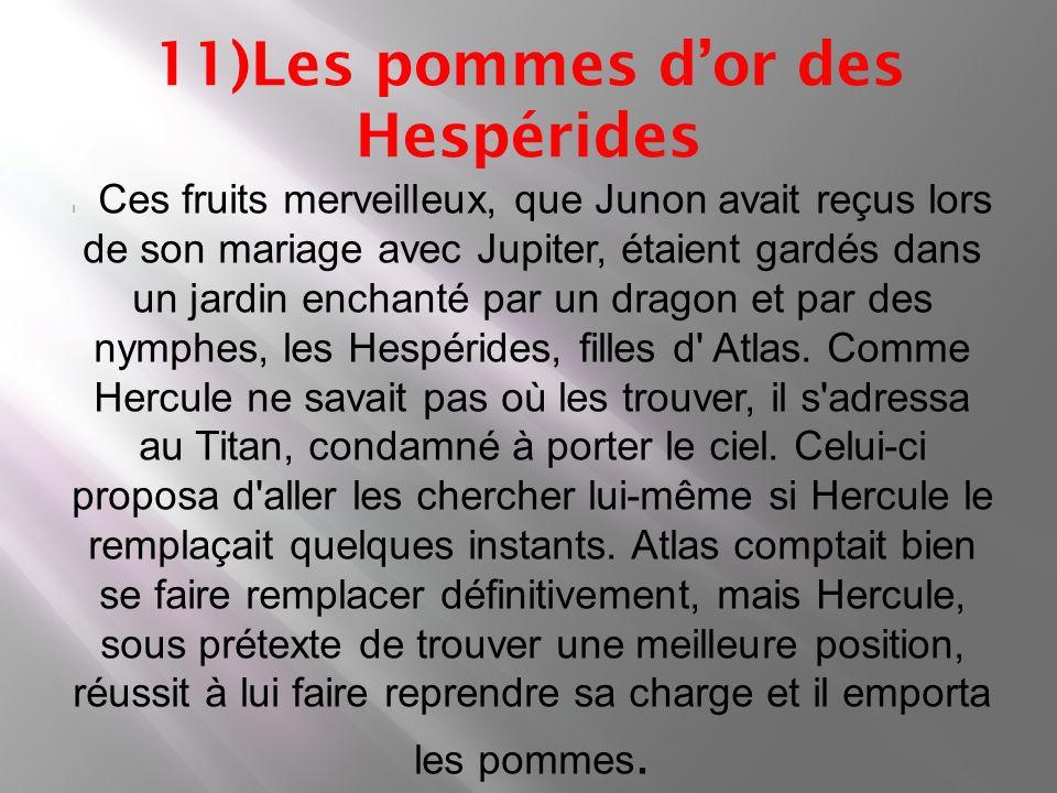 Hercule sa vie et ppt video online t l charger - Les pommes d or du jardin des hesperides ...