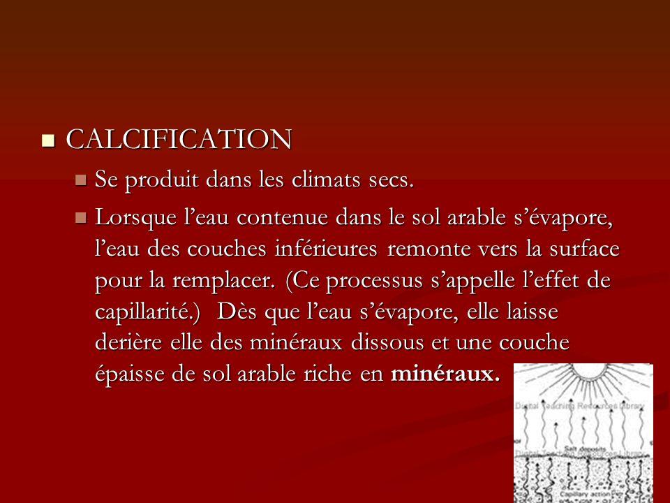 CALCIFICATION Se produit dans les climats secs.