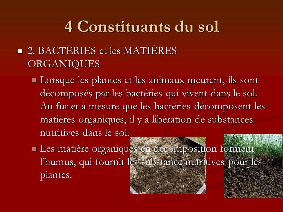 4 Constituants du sol 2. BACTÉRIES et les MATIÈRES ORGANIQUES