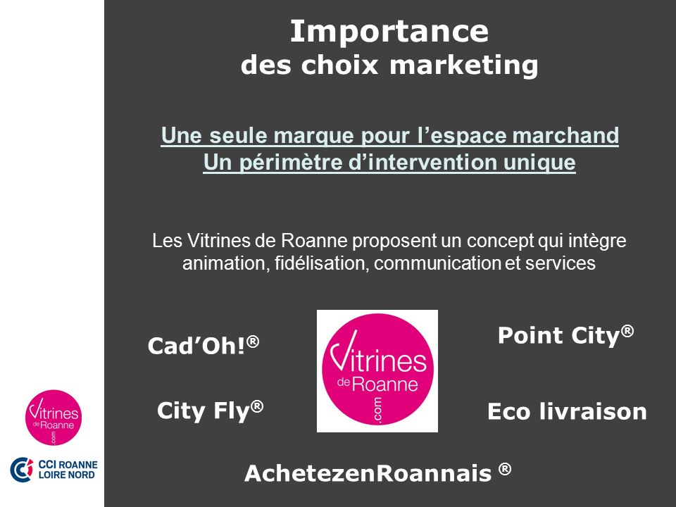 management de ville roanne