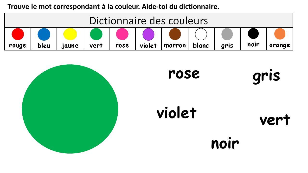 rose gris violet vert noir