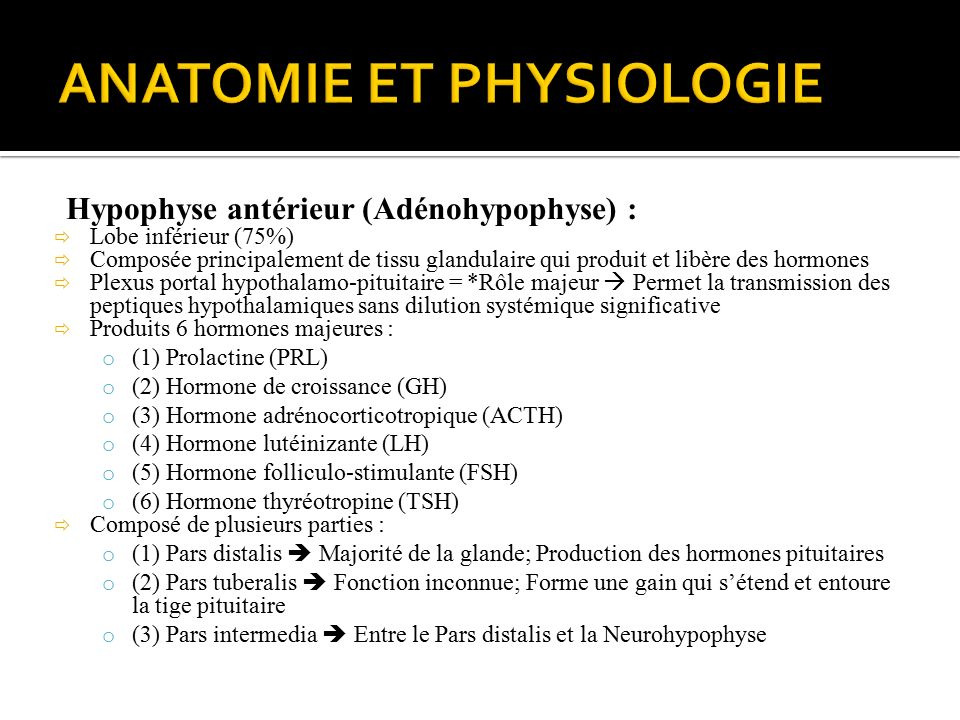 Charmant Anatomie Und Physiologie Der Hypophyse Ppt Bilder ...