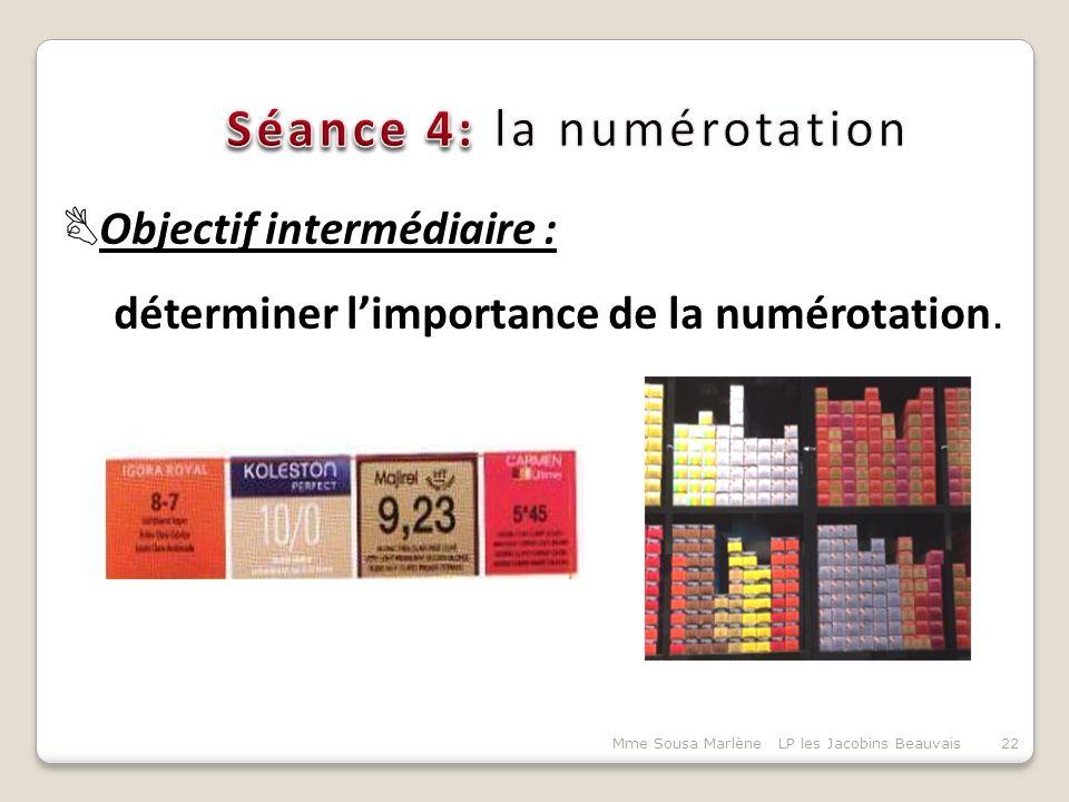 Séance 4: la numérotation