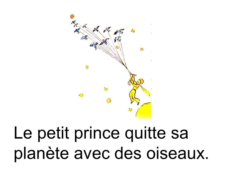 Le petit prince quitte sa planète avec des oiseaux.