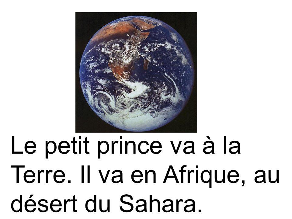 Le petit prince va à la Terre. Il va en Afrique, au désert du Sahara.