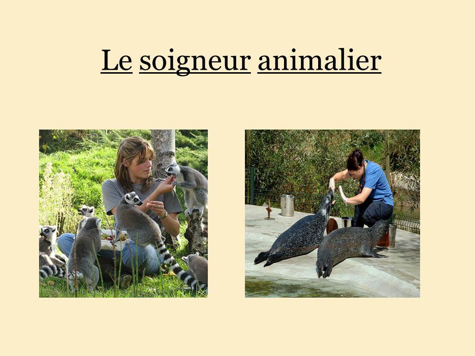 http://slideplayer.fr/slide/8911394/26/images/1/Le+soigneur+animalier.jpg