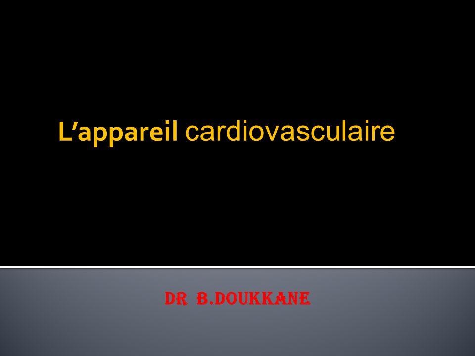 L'appareil cardiovasculaire