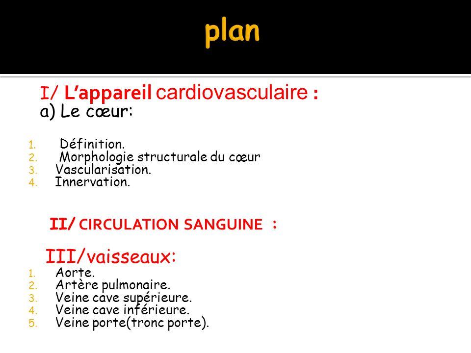 plan III/vaisseaux: I/ L'appareil cardiovasculaire : a) Le cœur: