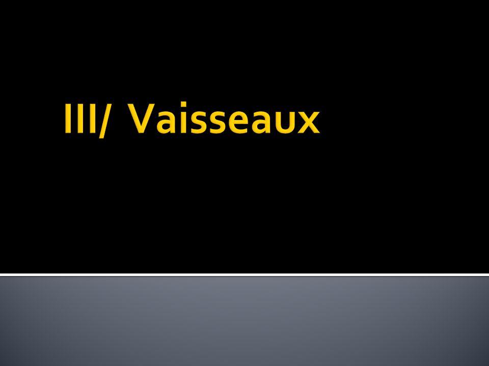 III/ Vaisseaux